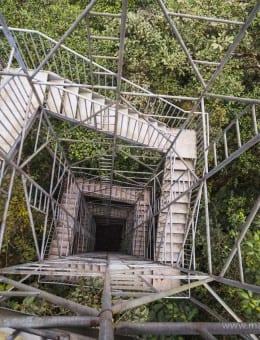 Mashpi Cloud Forest 26m tall observation tower, Choco Rainforest, Ecuador, South America-2