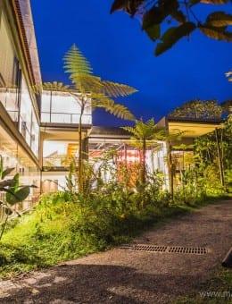 Mashpi Eco Lodge, Luxury accommodation in the Choco Rainforest, Mashpi Cloud Forest, Ecuador, South America-7