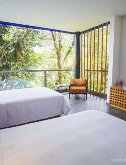 Mashpi Eco Lodge, luxury accommodation in an area of the Choco Rainforest known as Mashpi Cloud Forest, Ecuador, South America-9