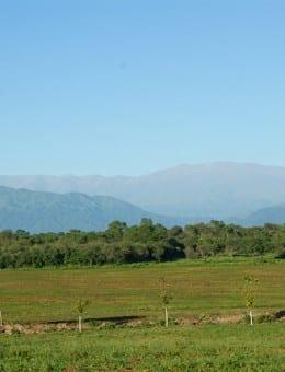 LP Cerros Calchaquies