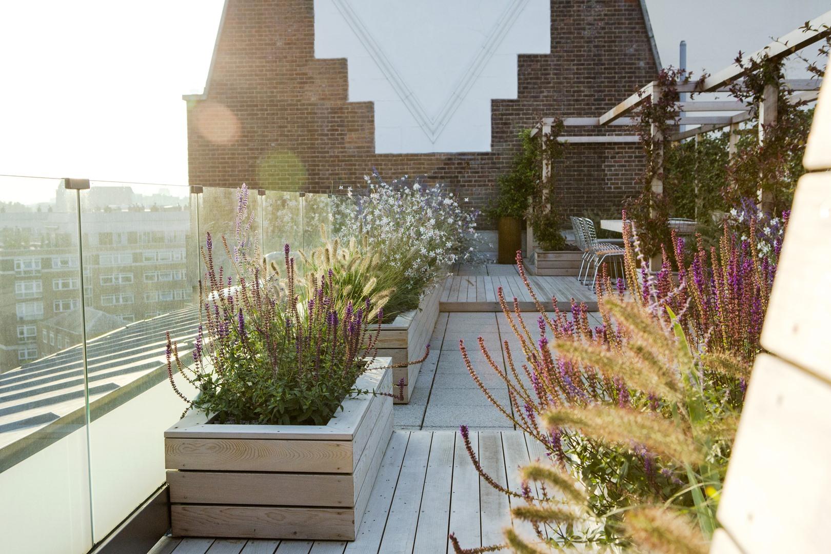 allsop place garden-8104 (Copy)
