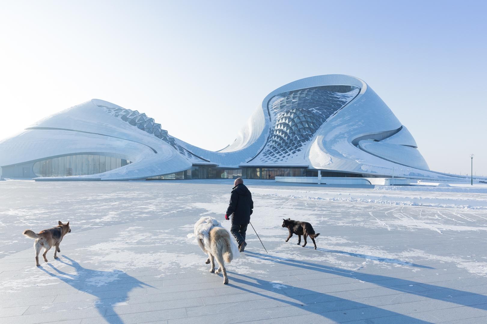 Harbin Opera House by Iwan Baan04 (Copy)