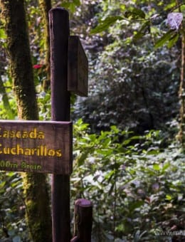 Cucharillos Waterfall sign in the Choco Rainforest, Ecuador. This area of jungle is the Mashpi Cloud Forest in the Pichincha Province of Ecuador, South America