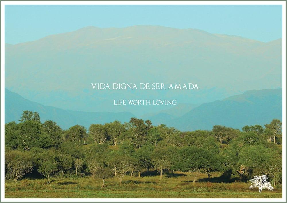 LP Una Vida Digna de Ser Amada
