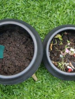 Compas con compost
