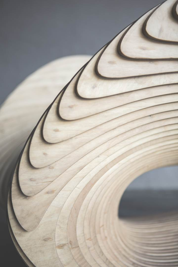 Betula Chair_Apical Reform 1 (Copy)