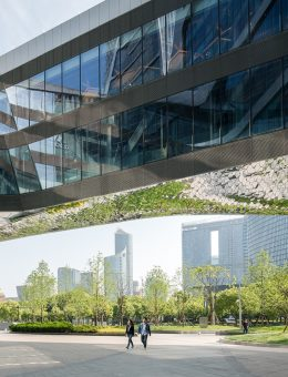 ©Seth Powers_Raffles City Hangzhou-final-large-12 (Copy)