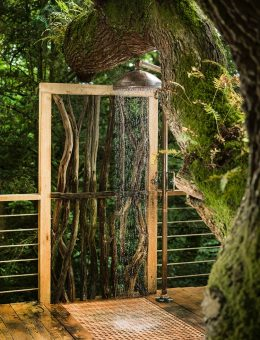 2.21craftycamping-thewoodsmanstreehouse-tree-shower (Copy)