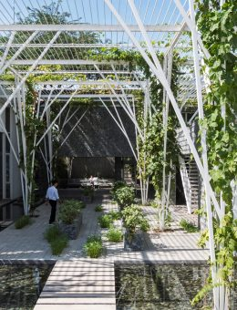Vegetable Trellis (17) (Copy)