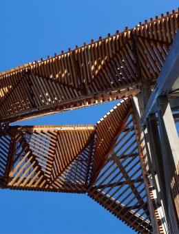 Ateliereen-uitkijktoren-onlanden-07