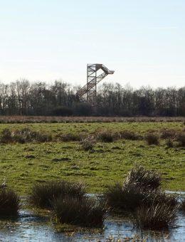 Ateliereen-uitkijktoren-onlanden-15