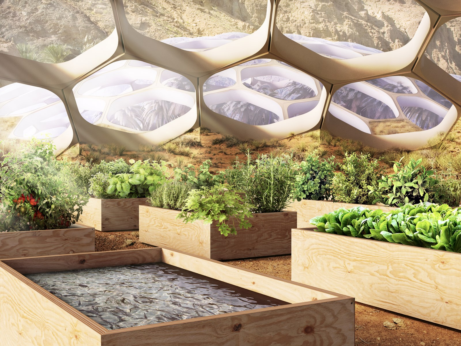 The Biodomes_Wildlife Conservation Centre_Allotments_Baharash Architecture (Copy)