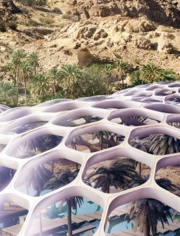 The Biodomes_Wildlife Conservation Centre_Biodomes 1_Baharash Architecture (Copy)