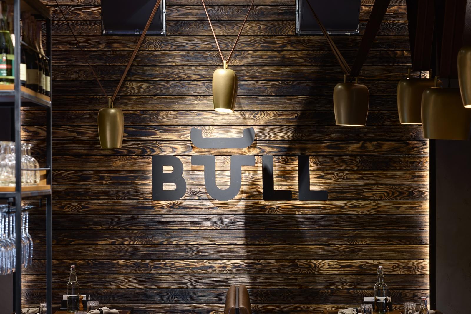 BULL_034 (Copiar)