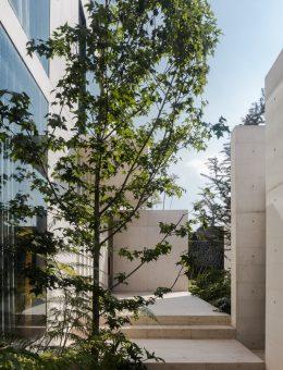 4 Casa Peñas_ CCA _ Centro de Colaboración Arquitectónica (Copiar)
