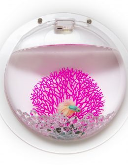 Deco: Ballon Fish