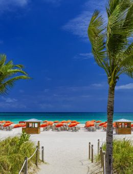 Royal Palm South Beach Oceanfront (Copiar)