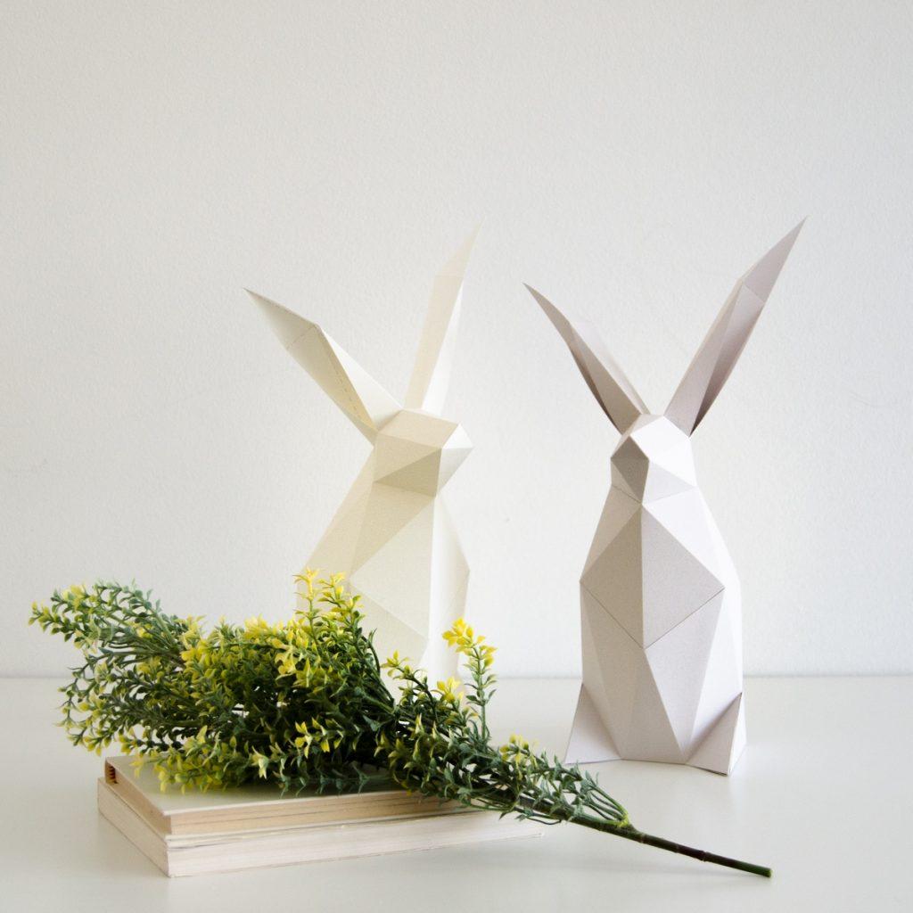 rabbit 2 - DSC_0124_a (Copiar)