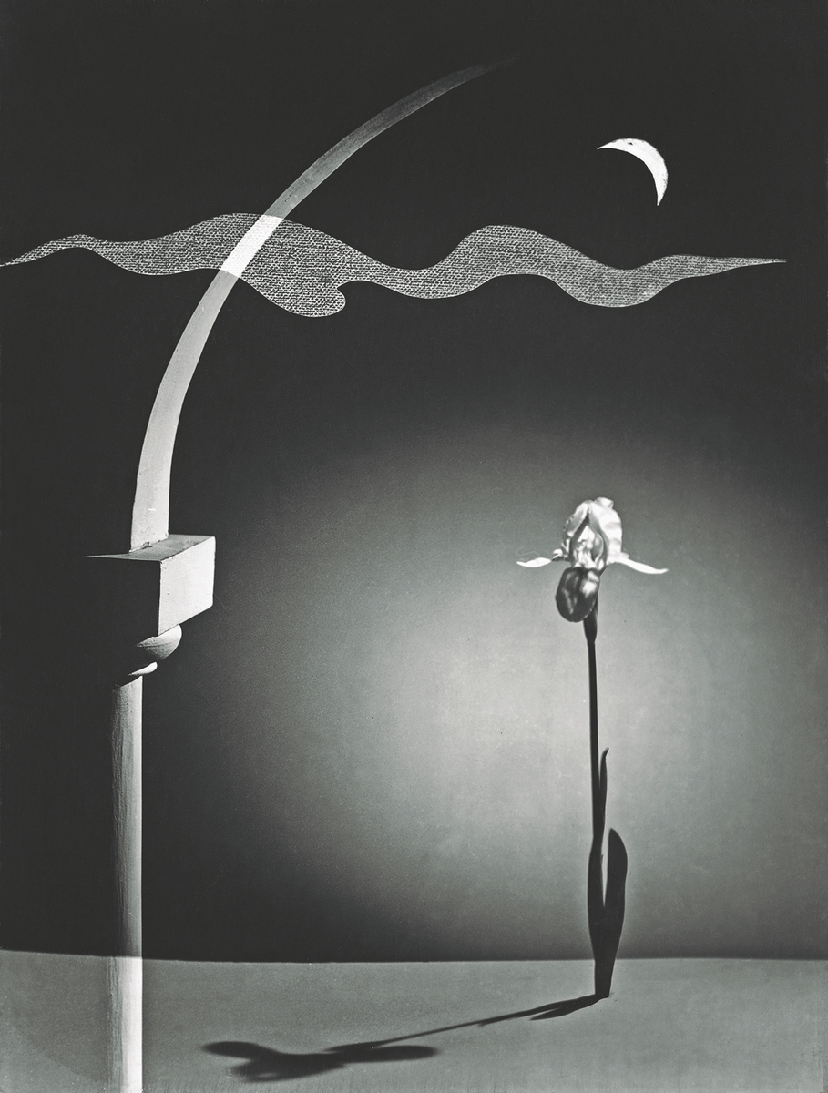 Sonata, C. Franck, 1954 - Ph: Pedro Otero