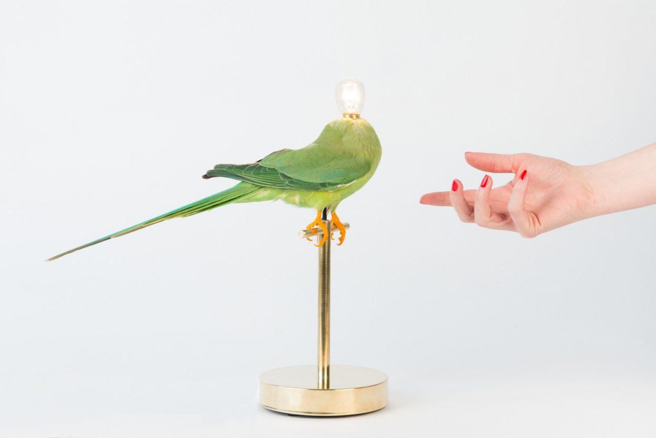 Single Perch Lamp 3 (Copiar)