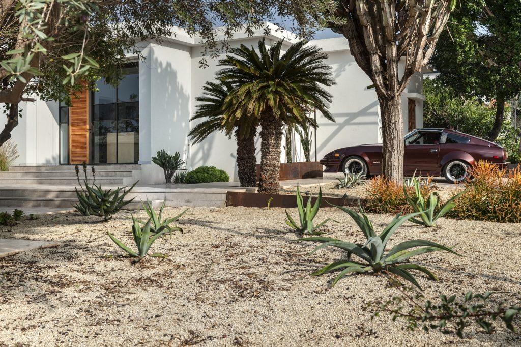 med.cacti house (5) (Copiar)