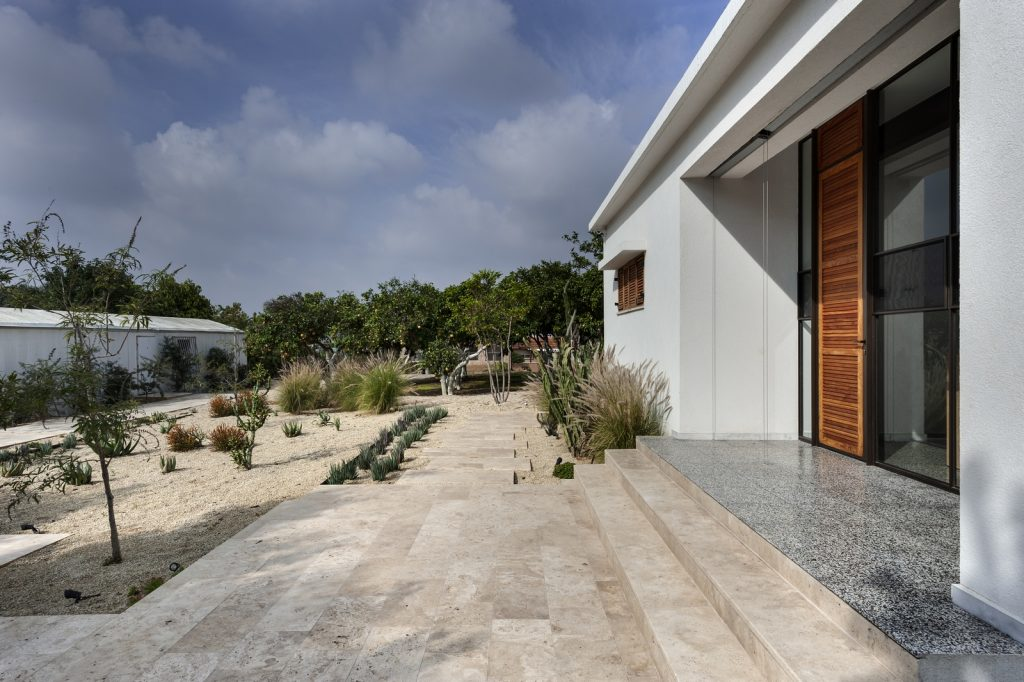 med.cacti house (8) (Copiar)